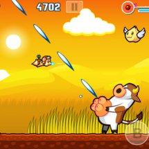Immagini Flying Hamster