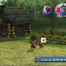 Immagini Harvest Moon: Another Wonderful Life