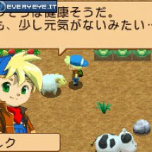 Immagini Harvest Moon: Island of Happiness