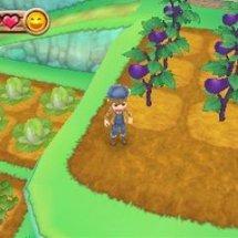Immagini Harvest Moon: A new Beginning