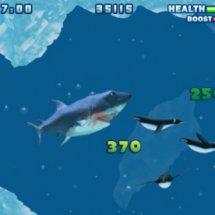 Immagini Hungry Shark
