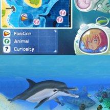 Immagini L'Isola dei Delfini: Avventure sottomarine