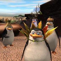 Immagini Madagascar: Escape 2 Africa