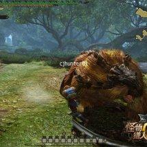 Immagini Monster Hunter Online