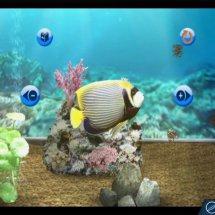Immagini My Aquarium