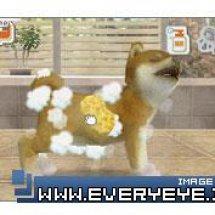 Immagini Nintendogs