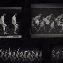 Immagini Optikammer