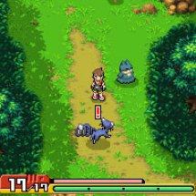 Immagini Pokemon Ranger 2