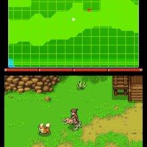 Immagini Pokémon Ranger : Shadows of Almia