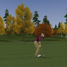 Immagini ProStroke Golf Tour 2007