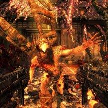 Immagini Shadow Warrior