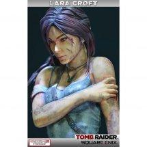 Immagini Tomb Raider: Definitive Edition