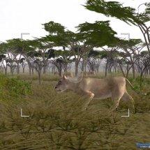 Immagini Wild Earth