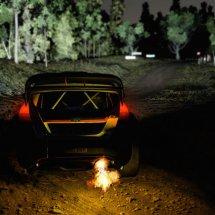 Immagini WRC 5