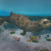 Immagini Zoo Tycoon 2: Marine Mania