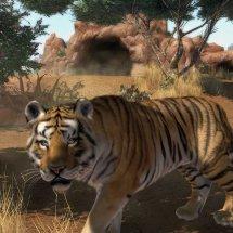 Immagini Zoo Tycoon