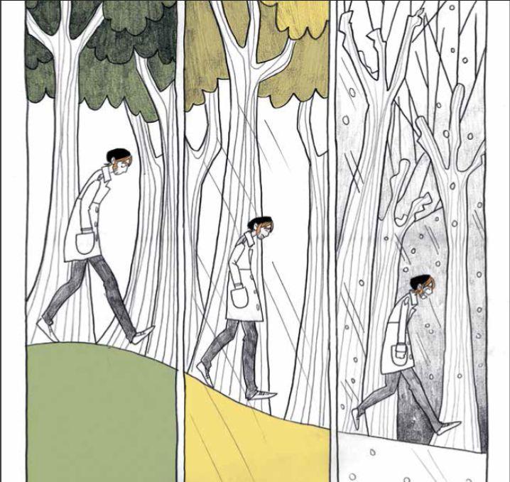 Il Re delle Fate: Recensione del fumetto di di Andrea Meucci ed Elena Triolo