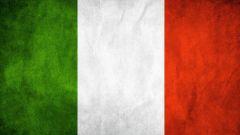 Quanto è importante per te la presenza della la lingua italiana nei videogiochi?